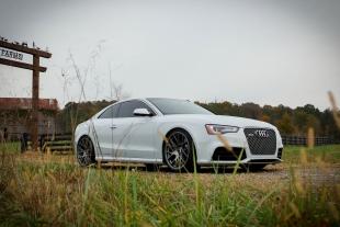 Travis Dodd's RS5 (28)