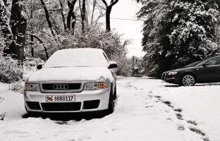 Snowshoes (9)