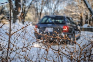 Avant Winter Shoot (10)