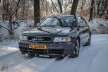 Avant Winter Shoot (3)
