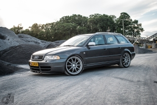 Avant Volks-0053